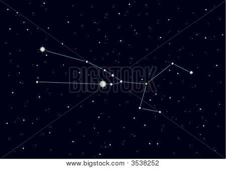 "Vector Illustration Of Constellation ""Taurus"""