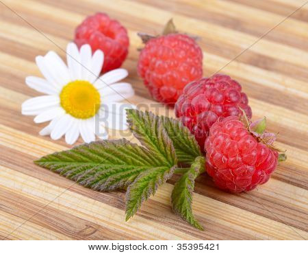 Fresh Ripe Raspberries With Leaf And White Camomile Flower