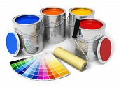 Cans with color paint, roller brush and color guide