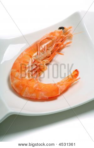 Cooked Prawn On A Plate