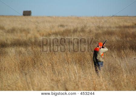 Upland de caçador