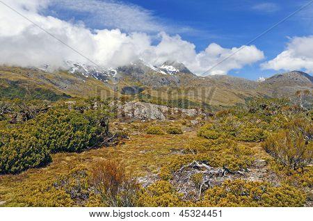 Alpine Vegetation Below Cloud Shrouded Peaks