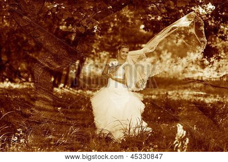 retro sepia photo, lonely woman white dress wedding bride tree f