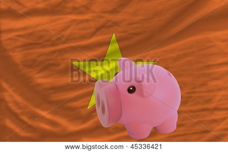 Piggy Rich Bank And  National Flag Of Vietnam