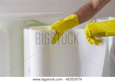 Hands Holding Roll Of  Wallpaper