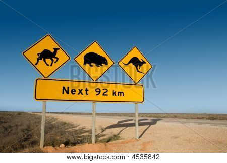 Kangaroo Wombat And Camel Warning Sign Australia