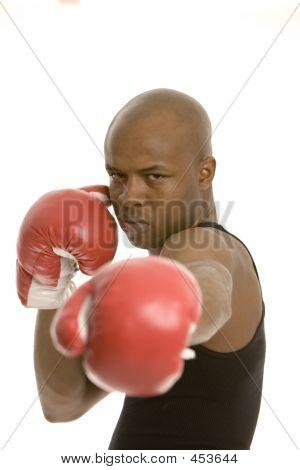 Big Punch, Face  In Focus