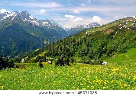 Alpine Mountains In Austria