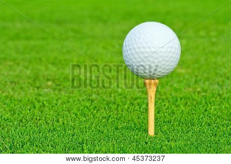 Golf Ball Closeup