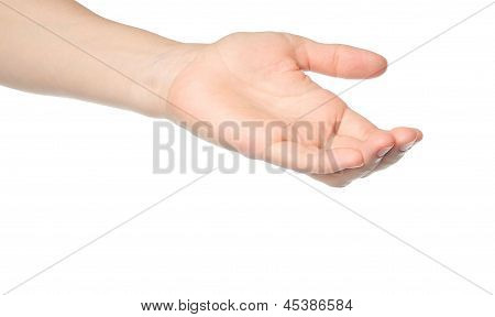 Open woman hand