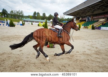 MOSCOW - JUN 9: Rider on horse at international competitions in show jumping CSI3 Vivat, Russia in equestrian center Bitsa, June 9, 2012, Moscow, Russia. Prize fund of competition was 114 500 euros.