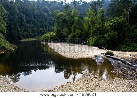 Endau Rompin National Park Malaysia