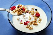 stock photo of cereal bowl  - breakfast cereal in a bowl with a spoon - JPG
