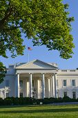 The White House - Washington DC, United States