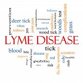 stock photo of bullseye  - Lyme Disease Word Cloud Concept with great terms such as deer tick blood bullseye bite and more - JPG