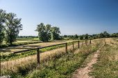 picture of dike  - a path on a dike on a sunny summer day - JPG