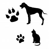 stock photo of dog footprint  - Cat and dog black and white illustration with their footsteps - JPG