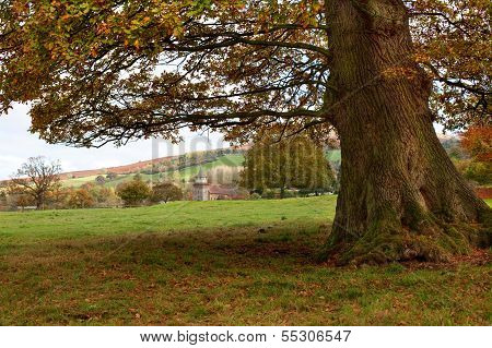 Rural Shropshire