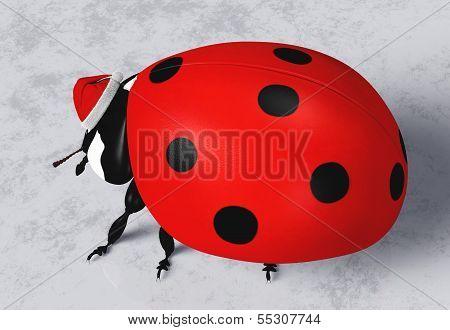 Ladybug With Santa Claus Hat