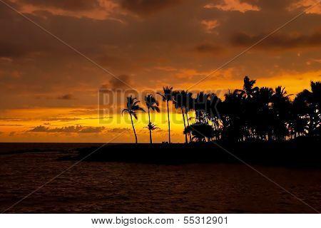 Beautiful Sunset On Hawaii Tropical Beach