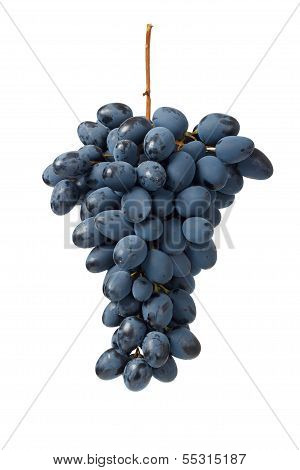 Fresh Blue Grape