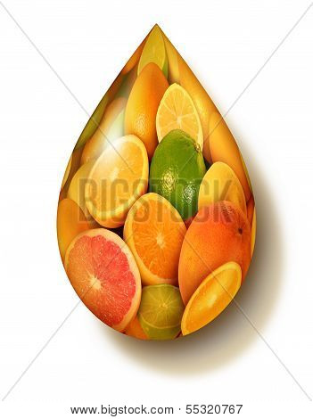 Citrus Fruit Symbol