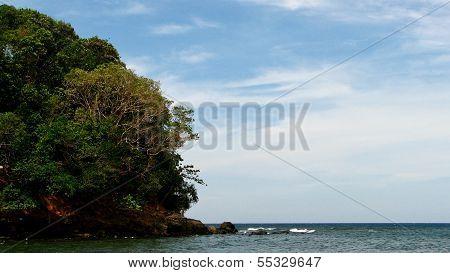 Lush Tropical Island Near the Sea