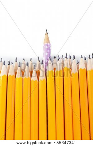 Celebratory pencil among usual pencils, isolated on white