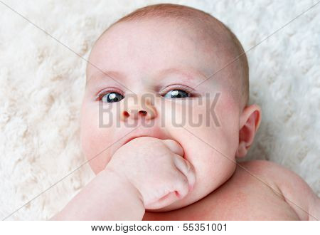 Baby With Fist In Mouth