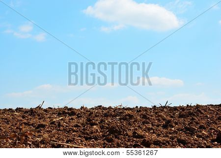 Soil And Sky