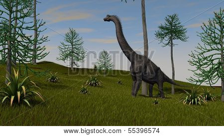 brachiosaurus walking on hill