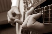 stock photo of bluegrass  - Narrow - JPG