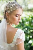 stock photo of bridal veil  - Blonde bride in a veil rear view in the countryside - JPG