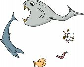 picture of food chain  - Cartoon of ocean food chain over white background - JPG