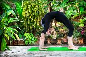 image of dhanurasana  - Yoga Chakrasana wheel pose by woman in black costume in the garden with palms banana trees and plants in the pots - JPG