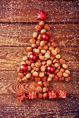 picture of hazelnut tree  - Hazelnuts - JPG
