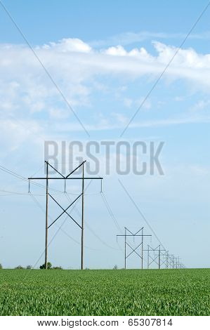 Power Poles In Hay Field