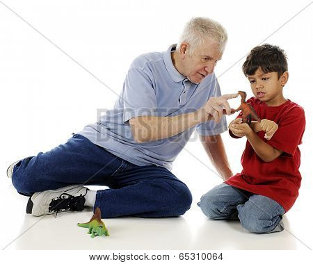 A preschooler carefully studying the toy dinosaur as he grandpa points out features.  On a white background.
