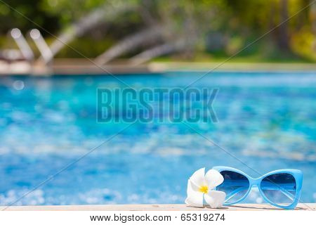 frangipani and sunglasses by the tropical pool