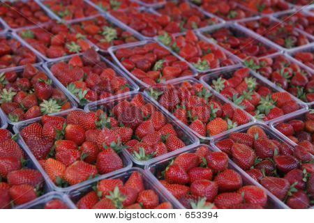 Erdbeer-Stall