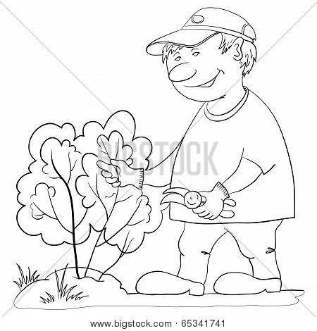 Gardener cuts a bush, contour