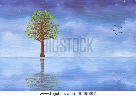 Tree reflecting in water