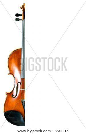 ViolinWhite_half
