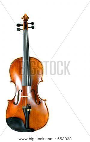ViolinWhite