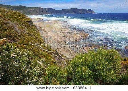 Rugged Coast of Southwest National Park, Tasmania