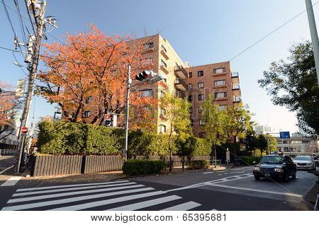 Tokyo - Nov 24: Residential Building On Omotesando Street On November 24. 2013
