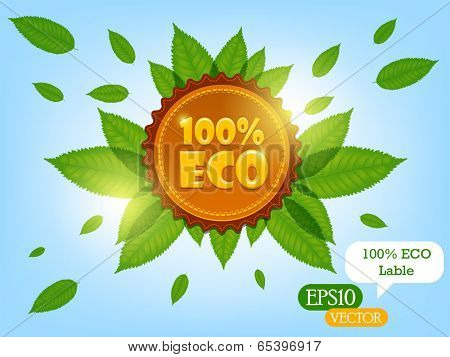 100% ECO label(vector)