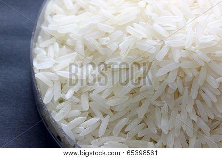 Rice Grain In Petrie Experimental Of Macro.