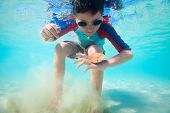 picture of sand dollar  - Cute little boy swimming underwater in tropical sea with sand dollar - JPG