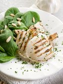 stock photo of cuttlefish  - grilled cuttlefish with fresh spinach salad - JPG